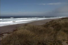 CA Beach at Point Reyes Stock Footage