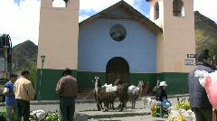 Ecuador market and llamas Stock Footage
