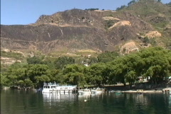 Cutover hillside Guatemala Stock Footage