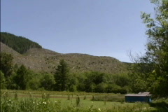 Clear-cut hillside OR Stock Footage