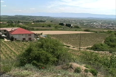 France Vineyards above Rhone Stock Footage
