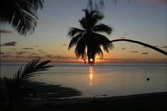 Aitutaki Setting sun & coconut palm Stock Footage