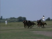 Hungary Galloping horses Hungary Stock Footage
