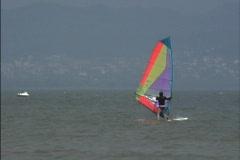 Wind surfing Lake Balaton Stock Footage