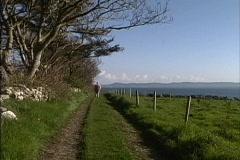 Ireland Country lane County Sligo Stock Footage
