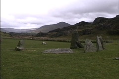 Ireland Stone circle with sheep Stock Footage