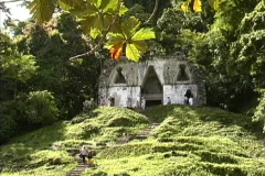 Palenque temple Stock Footage