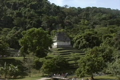 Maya Cities Palenque temple in jungle Stock Footage