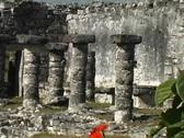 Maya Cities Tulum columns Stock Footage