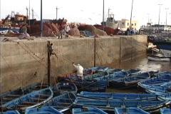 Morocco Fishing harbor Essaouira Stock Footage