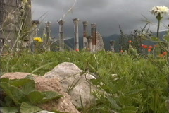 Morocco Ruins & flowers Volubilis Stock Footage