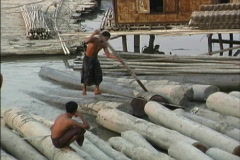Moving logs Myanmar Stock Footage