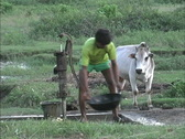 Nepal Boy pumps water Stock Footage