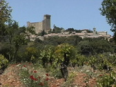 Stock Video Footage of  Chateauneuf-du-Pape Popes castle