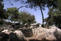Rocks & trees Israel - stock footage