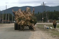 Russia Log truck Siberia Stock Footage
