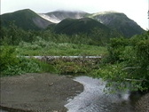 Scene with beaver dam AK Stock Footage