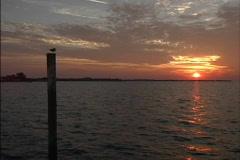 Sunset & gull on post Stock Footage