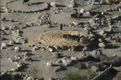 Thrashing floor Ladakh Stock Footage