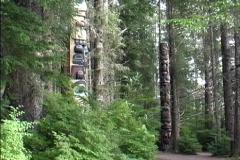 Totem Poles Sitka AK Stock Footage