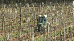 Tractor between grape vine rows Stock Footage