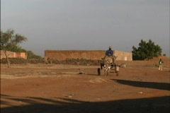 Donkey cart Mali Stock Footage