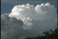Tropical thunderhead 1 Stock Footage