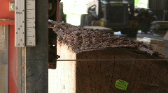 Sawing Logs in Lumber Mill Stock Footage