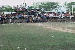 Horses enter bull ring in Yucatan Stock Footage