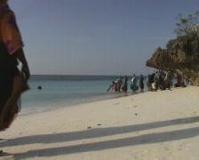Women with buckets full of fish walking on the beach of Zanzibar Stock Footage