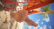 Sandy toes vertical Stock Footage
