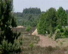 Ginkel Heath, 1944 dropzone near Ede and Arnhem - stock footage