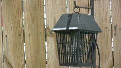 Bug Zapper in backyard Stock Footage