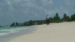 Horseback Riding on the Ocean - stock footage