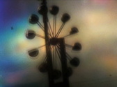 Roundabout Wind Mill Looped - Vintage Super8 Film Stock Footage