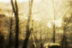 Eerie Landscape 01 Original - Vintage Super8 Film Stock Footage