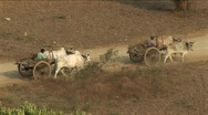 Stock Video Footage of Ox Cart in Bagan, Burma Myanmar