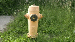 Yellow fire hydrant. Stock Footage