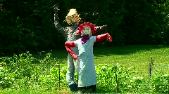Garden scarecrows Stock Footage