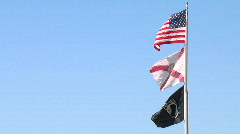 Three flags in the breeze - stock footage