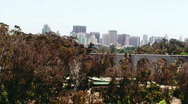 San Diego Skyline from Zoo Stock Footage