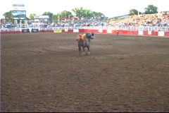 Bronc Busting 3   Stock Footage