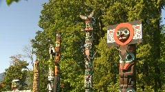Totem poles montage Stock Footage
