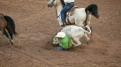 Steer wrestling rodeo P HD 1060 Stock Footage
