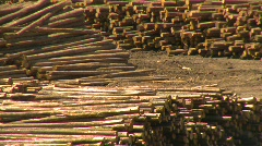Log mill montage, #1 Stock Footage