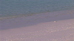 Calm swapping ocean on beach in early morning sunlight  Stock Footage