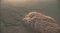 Dead Sea Stock Footage
