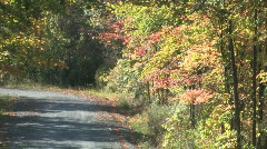Zoom out shot of rural country road in autumn with fall colors Stock Footage