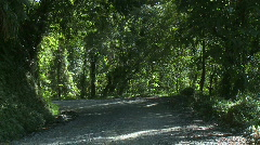 Jeep drives on rain forest road Stock Footage
