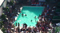 Pool Party Timelapse HD Footage